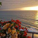 Sunset with Bougainvilleas con Puesta del Sol by PtoVallartaMex