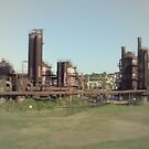 Gasworks Park by Laurel  Coleman