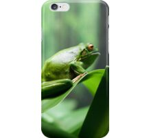Green Frog iPhone Case/Skin
