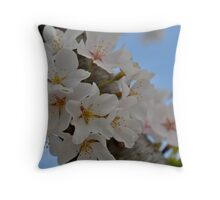 2012 Cherry Blossom Blooms Throw Pillow