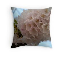 2012 Cherry Blossom Blooms II Throw Pillow