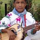 The Son - Guitar And Vocal - El Hijo - Guitarrista Y Cantante by Bernhard Matejka