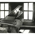 The grand piano by HermesGC