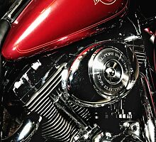 Harley Davidson Electra-Glide Classic by jckiss
