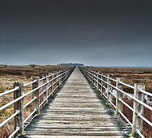 New England Boardwalk  by NEDreamsPhoto