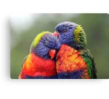 Canoodling in the Mist Canvas Print