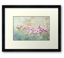 Spring Reverie Framed Print