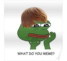 what do you mean? meme* Poster