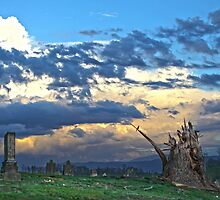 After the Tornado by susi lawson