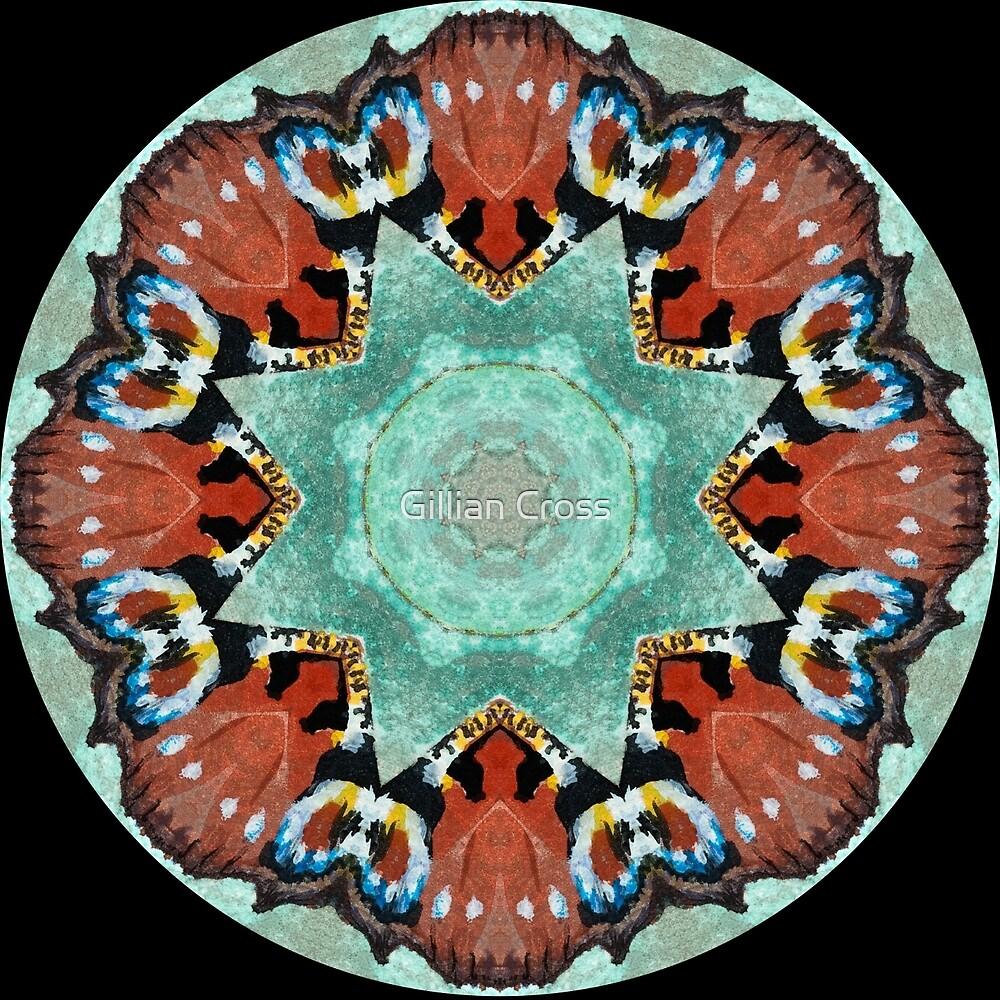 Kaleidoscope Peacock Butterfly by Gillian Cross