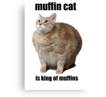 Cat Meme Canvas Print