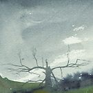 Quiet by Matthew Berry