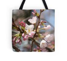 DC Spring - The Cherry Blossoms II Tote Bag