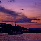 Budapest the Danube River at night.Number 3 by Anatoly Lerner