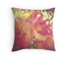 Faded Roses Throw Pillow