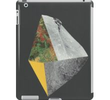 Beyond the Edge 2 iPad Case/Skin