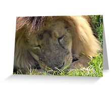 The King Munches Greeting Card