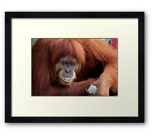 Way Too Hot Framed Print
