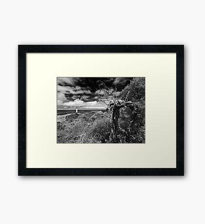 A view above Cape Schank Framed Print