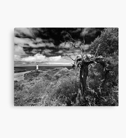 A view above Cape Schank Canvas Print