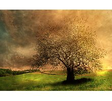 Stormy Weather Photographic Print