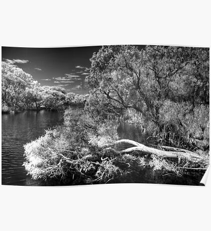 Canning River IR Poster