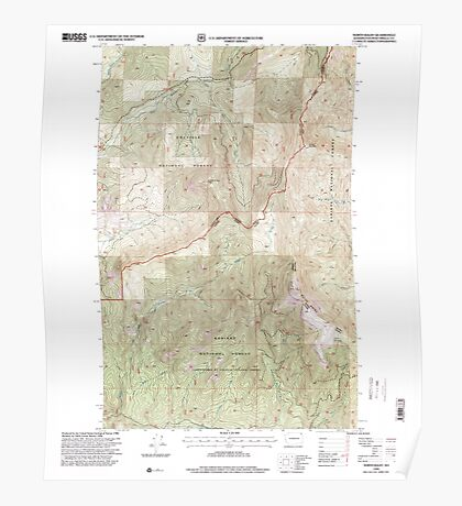 USGS Topo Map Washington State WA North Baldy 242856 1996 24000 Poster