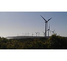 Elegant Energy, Albany WA Photographic Print