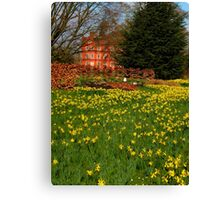 the Kew Palace with daffodils Canvas Print