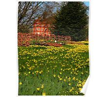 the Kew Palace with daffodils Poster