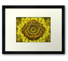 Sunflower 3D Bloom  Framed Print
