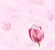 Pink Tulip Heaven by Helmar Designs