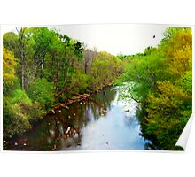 Chattahoochee River, Atlanta, Ga. Poster