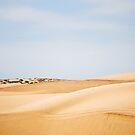 Mar de arena by Constanza Caiceo