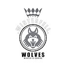 House Stark Sports Badge iPhone Case by liquidsouldes