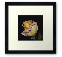 Wet and Wonderful Framed Print