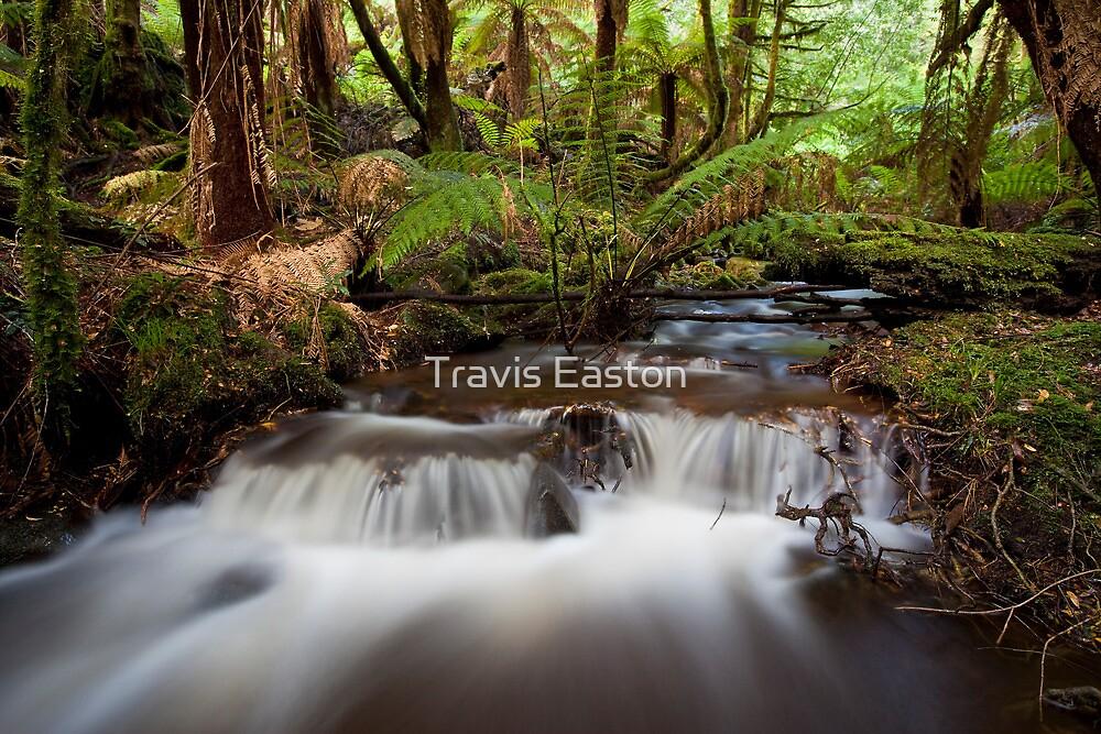 Acheron River by Travis Easton