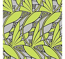 Modern art nouveau tessellations green and gray Photographic Print