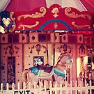carousel 8 by Jamie McCall