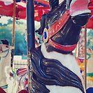 carousel 11 by Jamie McCall