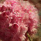 cherry blossom iphone case by Sonia de Macedo-Stewart