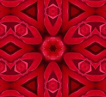Kaleidoscope Red Red Rose by Gillian Cross