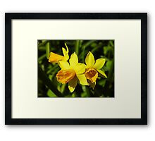 The Three Sisters Framed Print
