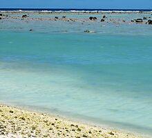 beach Rarotonga by Anne Scantlebury