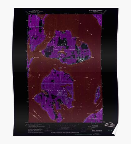 USGS Topo Map Washington State WA Mc Neil Island 242254 1959 24000 Inverted Poster