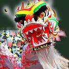 Dragon Fire - Drouin Gippsland by Bev Pascoe