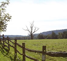 wooden fence in rural Pennsylvania by Heather Langeland