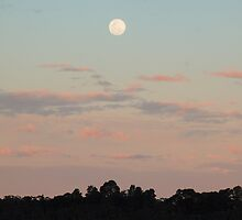 Moonrise Over Wentworth Falls by mountainpics