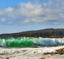 EMERALD WAVES by Sandy Stewart