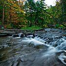 Wolf Creek -Autumn by Jeff Palm Photography